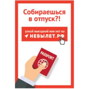 Проверить, выпустя ли за границу онлайн